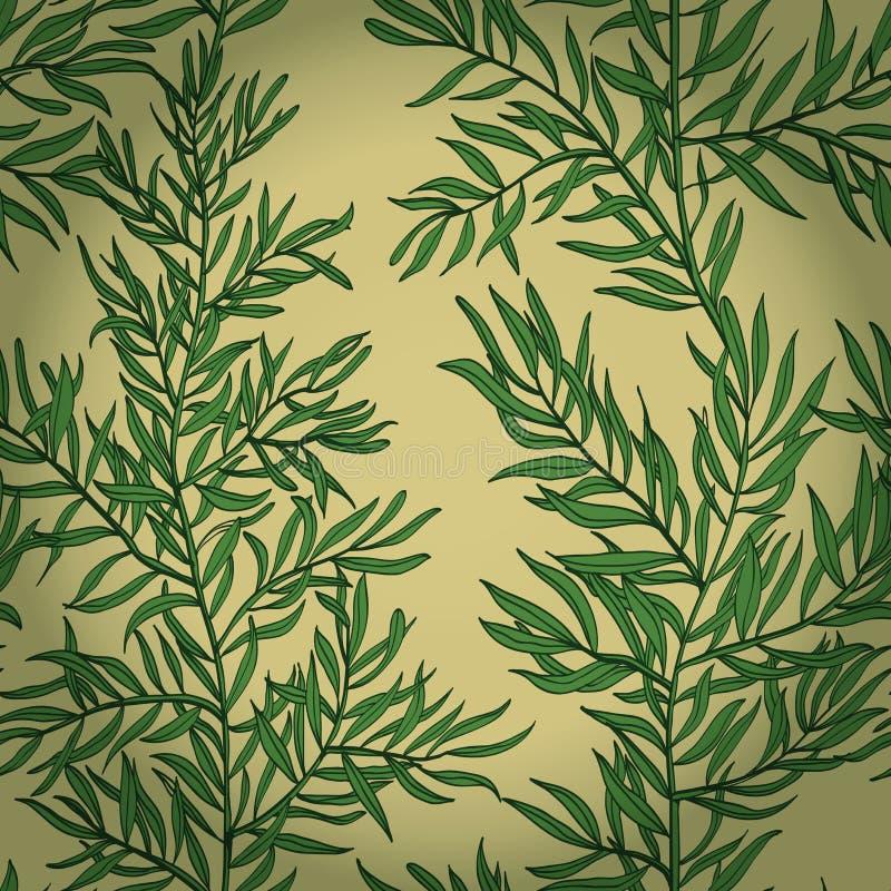 Naadloze uitstekende achtergrond met groene rozemarijn royalty-vrije illustratie