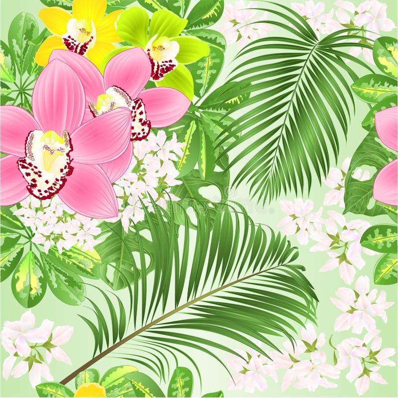 Naadloze van de regelings mooie Orchideeën van textuur tropische bloemen bloemen roze geelgroen van Cymbidium met Schefflera en p royalty-vrije illustratie