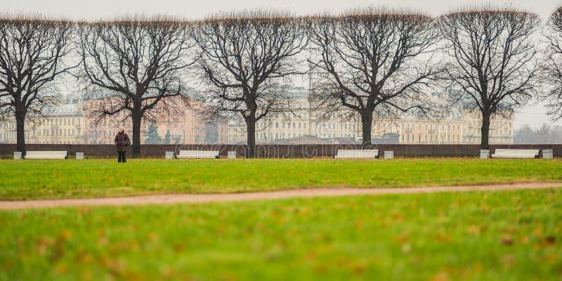 Naakt bomen en gazon in Heilige Petersburg, Rusland royalty-vrije stock foto