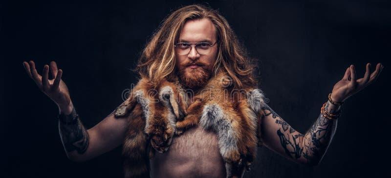 Naakt tattoed roodharige hipster mannetje met lang luxuriant haar en het volledige baard stellen met de vos binnen huiden op zijn stock afbeeldingen