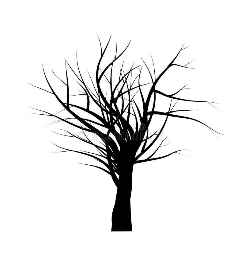 Naakt van het het silhouet vectorsymbool van de boomtak het pictogramontwerp Mooie die illustratie op witte achtergrond wordt geï royalty-vrije illustratie