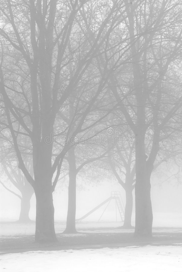 Naakte bomen in de wintermist stock afbeelding