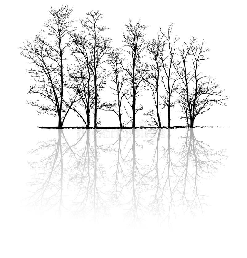 Naakte bomen met bezinning stock illustratie