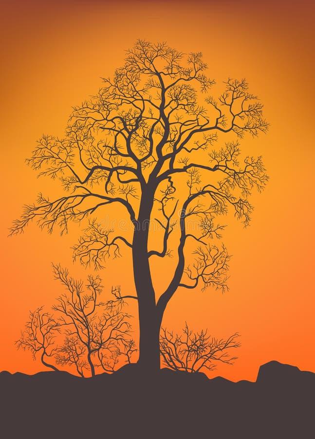 Naakte boom en struiken royalty-vrije illustratie