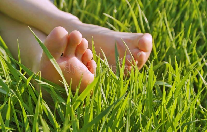 Naakte voeten in het gras stock foto