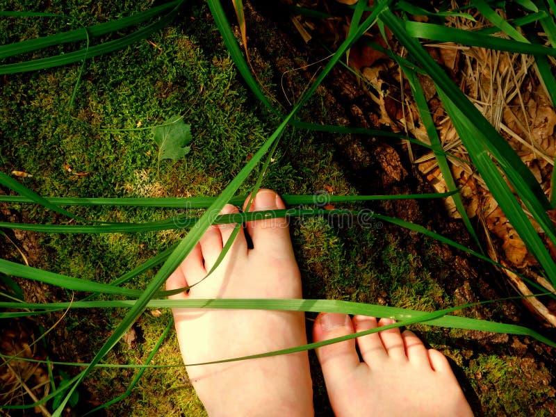 Naakte voeten op een bemost boomstam en een gras stock foto