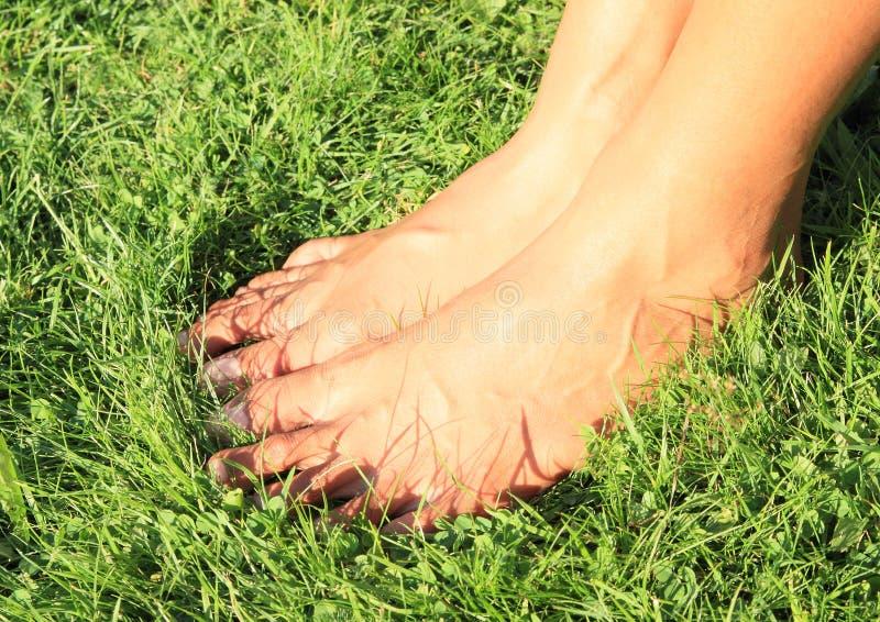 Naakte voeten op gras royalty-vrije stock foto's