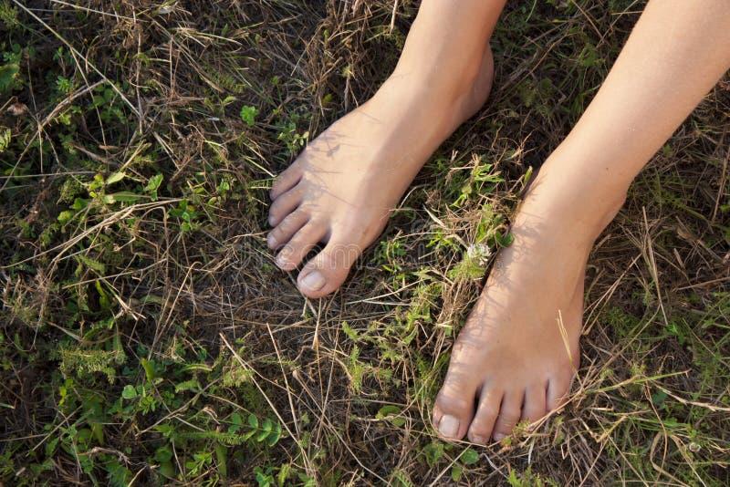 Naakte vrouwelijke voeten op een gras stock foto