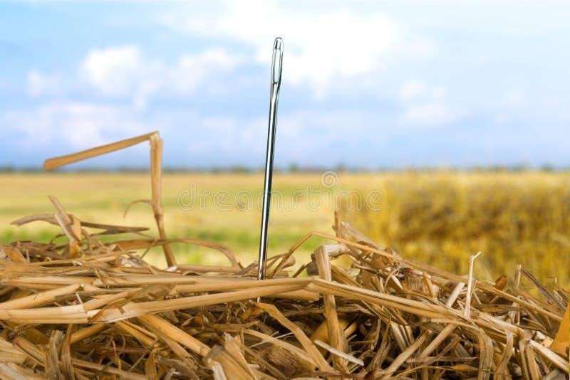 Naald in een haystack royalty-vrije stock fotografie