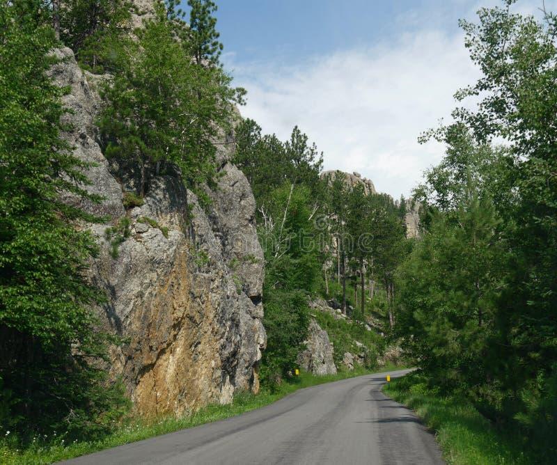 Naaldenweg, Custer State Park-foto's, Zuid-Dakota stock afbeelding
