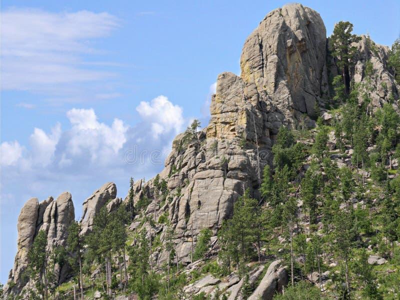 Naaldenweg, Custer State Park-foto's, Zuid-Dakota stock foto