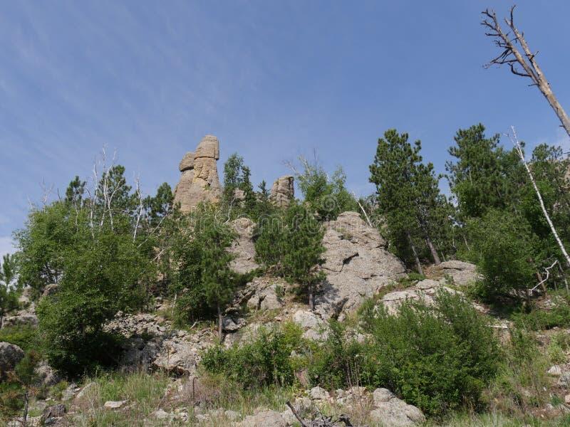 Naaldenweg, Custer State Park-foto's, Zuid-Dakota stock afbeeldingen