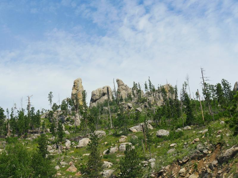 Naaldenweg, Custer State Park-foto's, Zuid-Dakota stock foto's