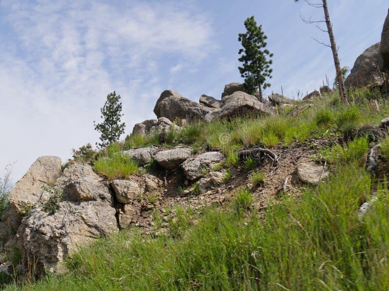 Naaldenweg, Custer State Park-foto's, Zuid-Dakota royalty-vrije stock foto