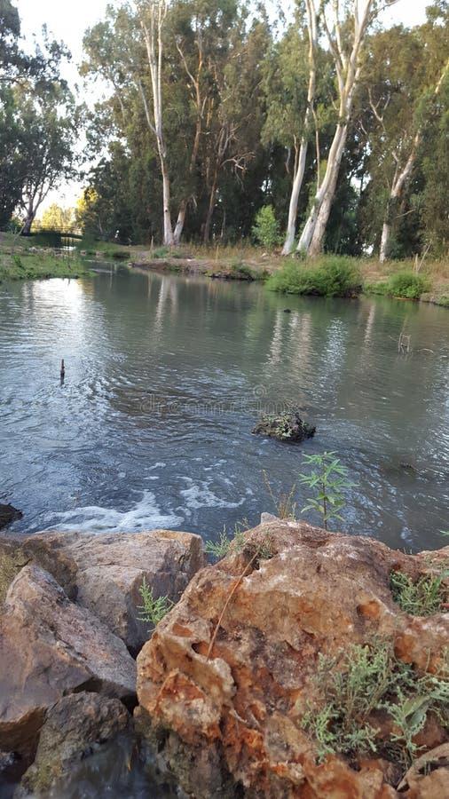 Israel Naaman river. Nature river and trees royalty free stock image