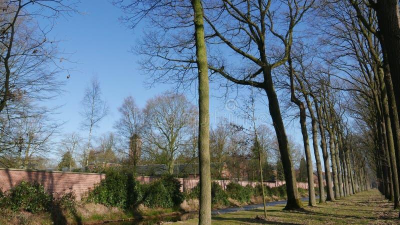 Naast de abdij in Westmalle stock afbeelding
