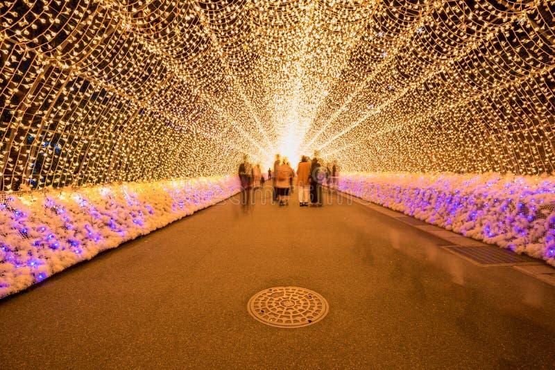 Nabana żadny Sato zimy iluminacja obraz royalty free