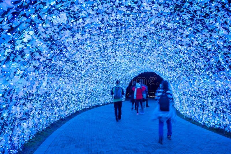 Nabana żadny Sato zimy iluminacja fotografia royalty free