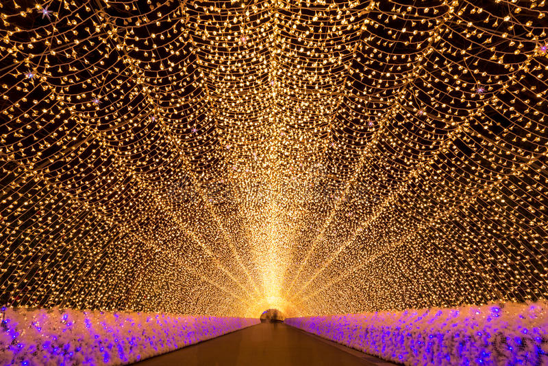Nabana κανένας κήπος τη νύχτα Νάγκουα Sato στοκ φωτογραφίες