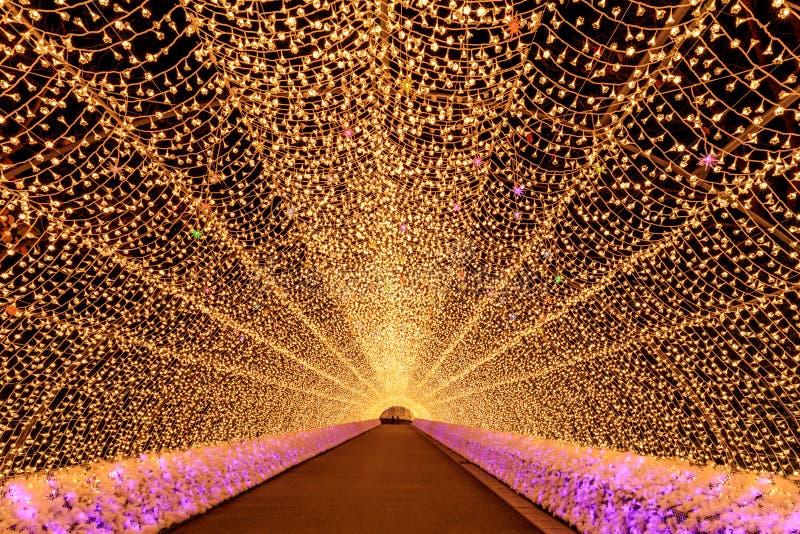 Nabana отсутствие освещения зимы сада Sato на ноче, Нагое стоковая фотография