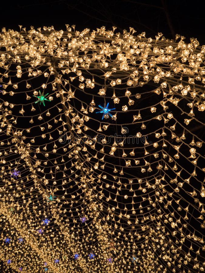 Nabana отсутствие сада на ноче в зиме, Mie Sato, Японии стоковые изображения rf