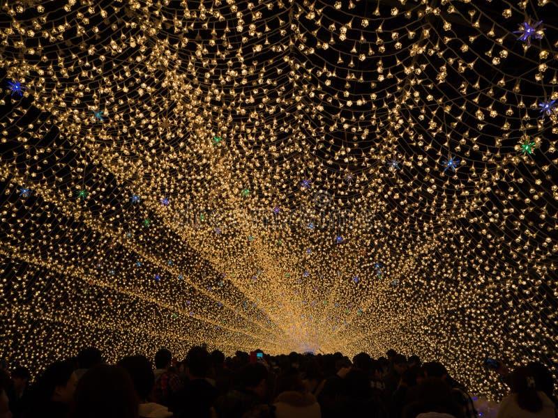 Nabana geen Sato-tuin bij nacht in de winter, Mie, Japan royalty-vrije stock afbeeldingen