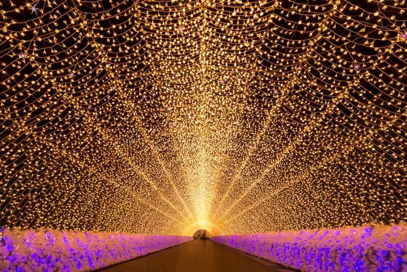 Nabana ingen Sato trädgård på natten Nagoya arkivfoton