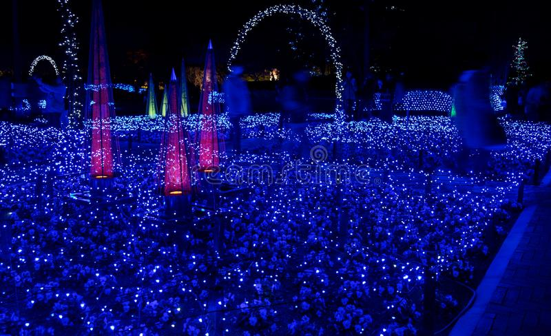 Nabana inte Sato, ljus festival p? Nagashima, Mie Prefecture royaltyfria foton