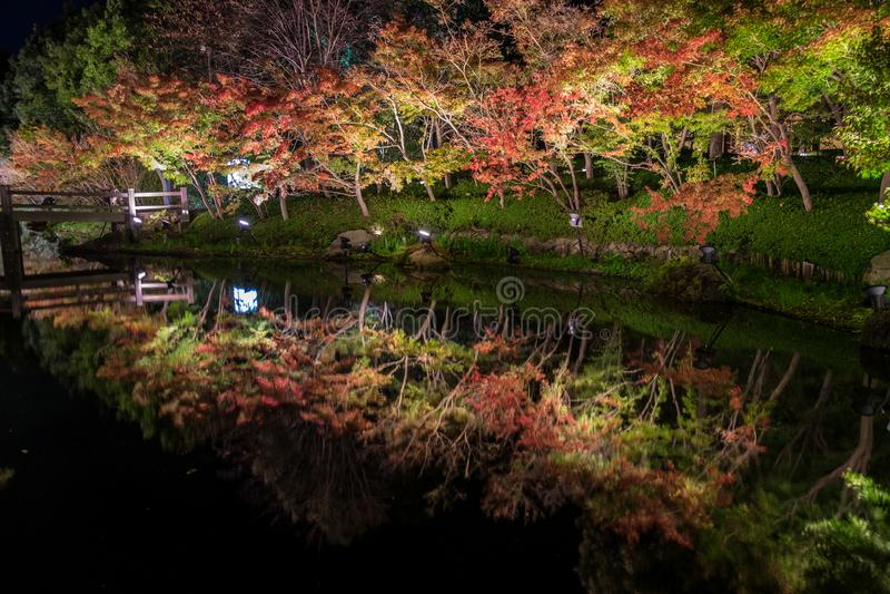Nabana inte Sato, ljus festival p? Nagashima, Mie Prefecture royaltyfri fotografi
