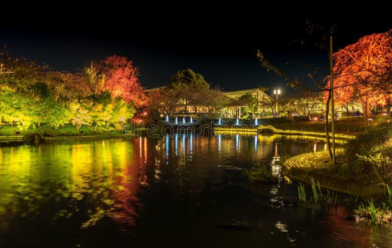 Nabana inte Sato, ljus festival p? Nagashima, Mie Prefecture japan royaltyfri bild