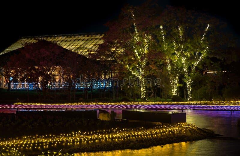Nabana inte Sato, ljus festival p? Nagashima, Mie Prefecture japan arkivfoto