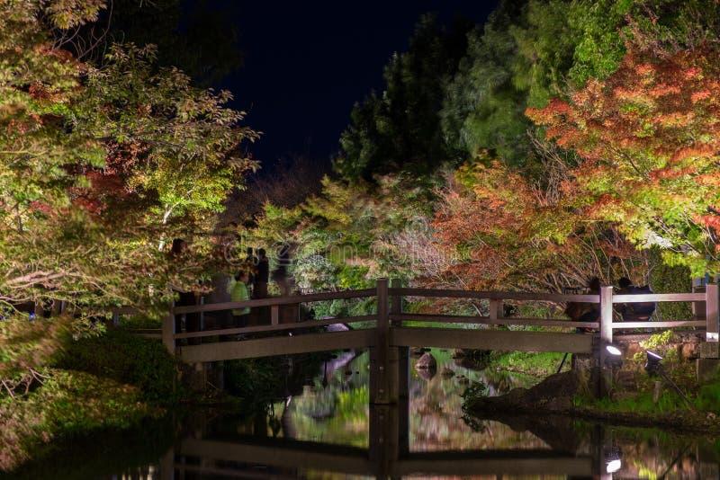 Nabana não Sato, festival claro em Nagashima, Mie Prefecture imagens de stock