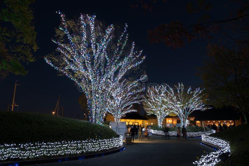 Nabana n?o Sato, festival claro em Nagashima, Mie Prefecture foto de stock