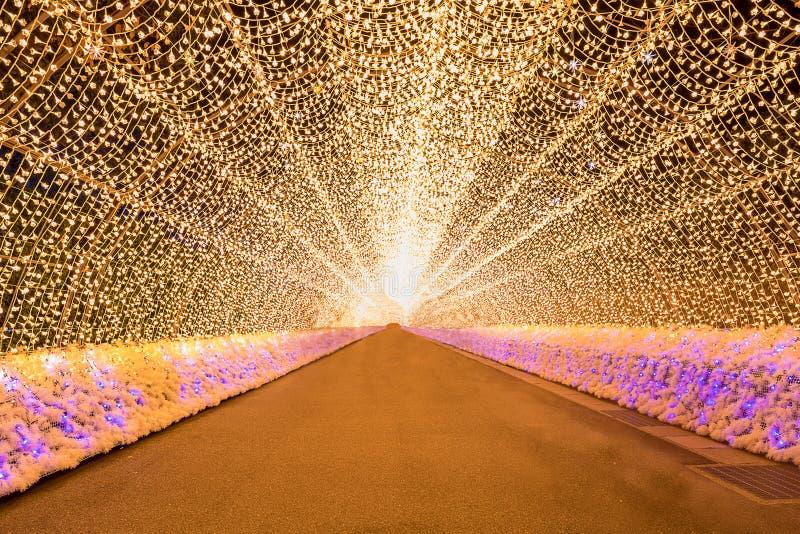 Nabana nessun'illuminazione di inverno di sato fotografia stock libera da diritti
