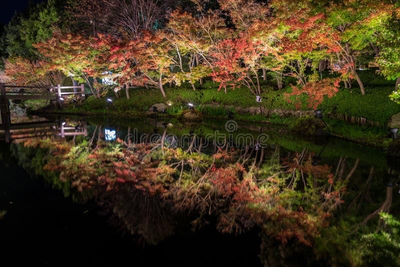 Nabana no Sato, festival leggero a Nagashima, Mie Prefecture fotografia stock libera da diritti