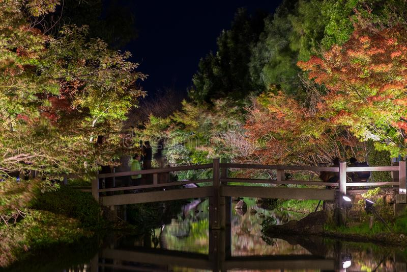 Nabana non Sato, festival léger chez Nagashima, Mie Prefecture images stock