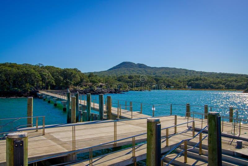 Nabrzeże przy Rangitoto wyspą, Hauraki zatoka, Nowa Zelandia w słonecznym dniu fotografia stock