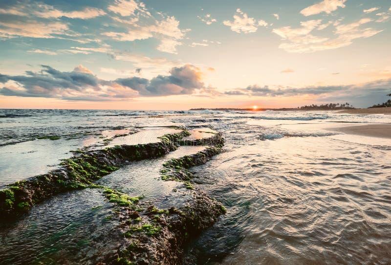 Nabrzeżne rafy przy niskiego przypływu czasem, zmierzch, Sri Lanka obraz royalty free