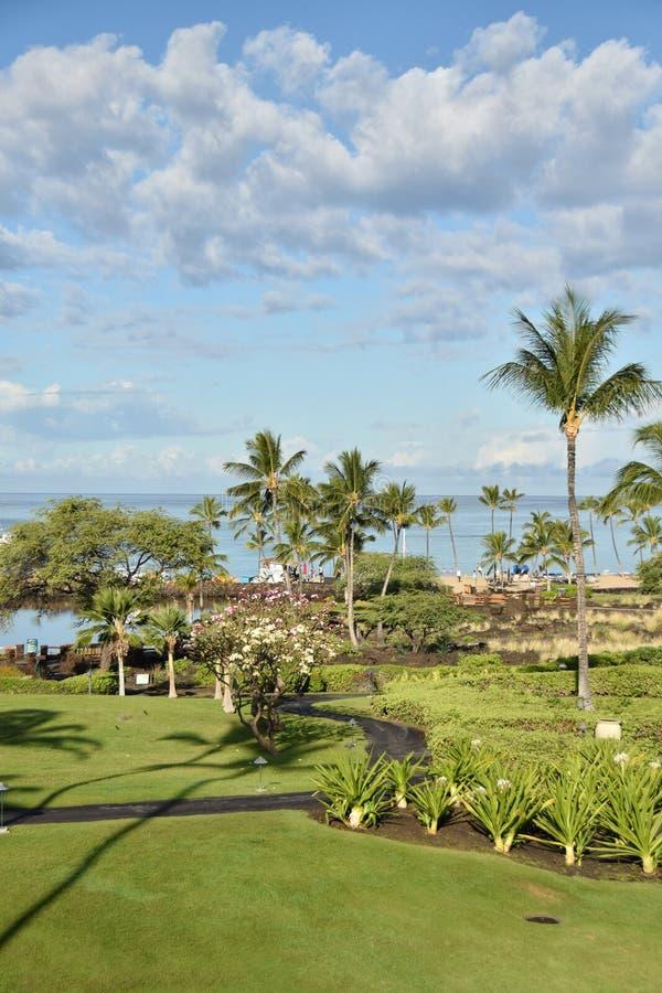 Nabrzeżny park w Hawaje fotografia royalty free