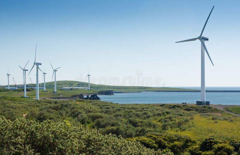 Nabrzeżny wiatrowy gospodarstwo rolne zdjęcie royalty free