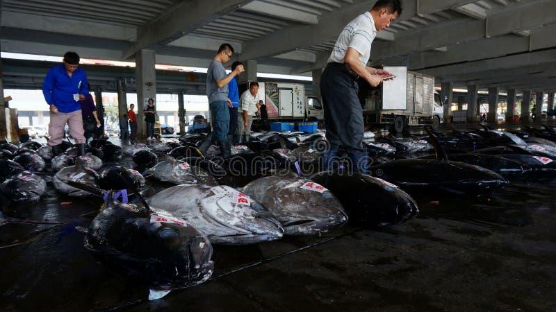 Nabywcy sprawdzają tuńczyk ryba przed licytować w Donggang, Tajwan fotografia royalty free