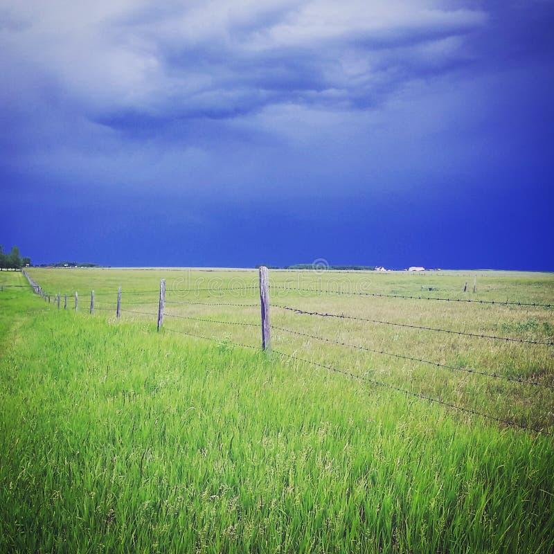 Nach dem Sturm stockbilder