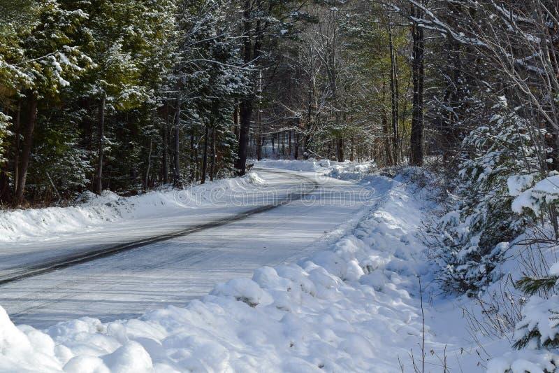 Nach neue Schneefälle auf einem Schotterweg im Kiefernwald stockfotografie