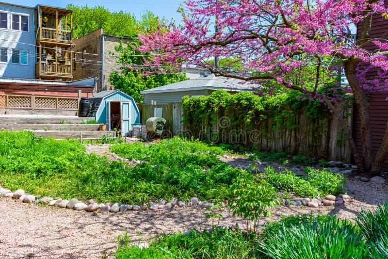 Nachbarschafts-Gemeinschaftsgarten in Logan Square Chicago während des Sommers lizenzfreies stockbild