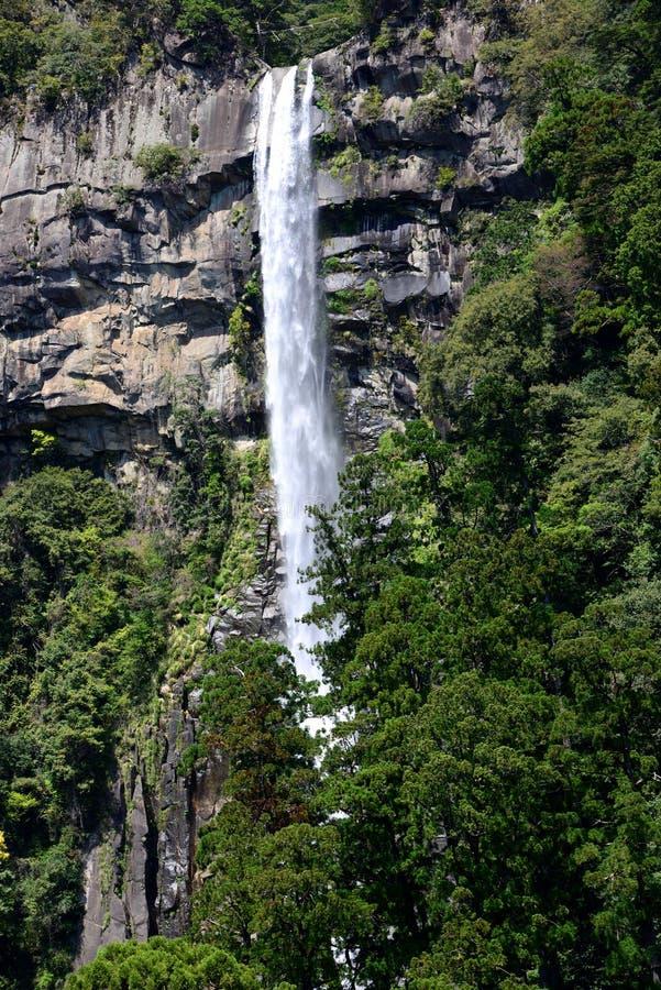 Nachi Falls au Japon photographie stock libre de droits
