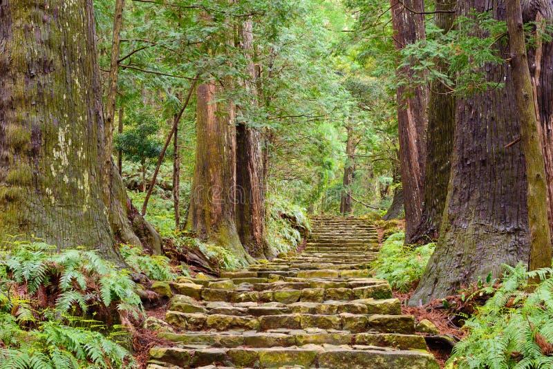 Nachi Japonia zdjęcie royalty free