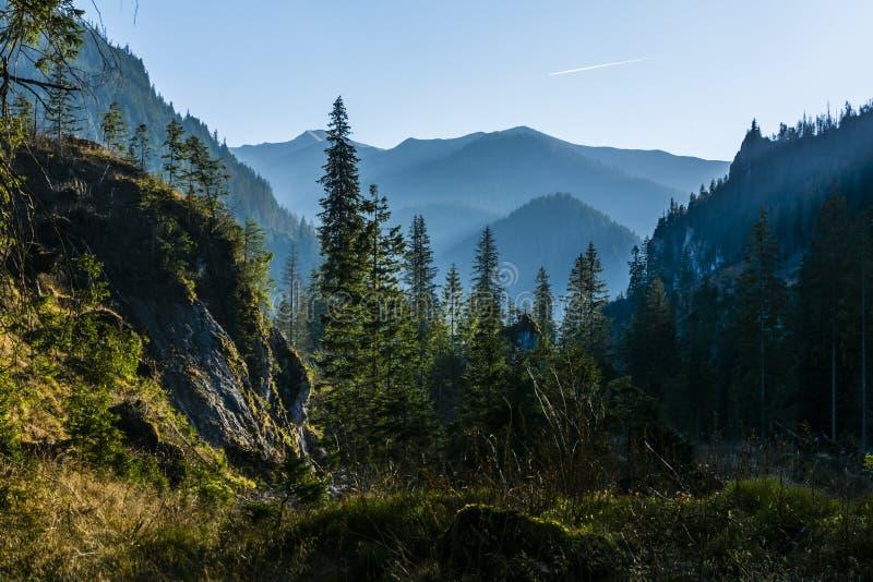 Nachmittag und Glättung der faszinierenden Landschaft im Tal in den Bergen lizenzfreies stockbild