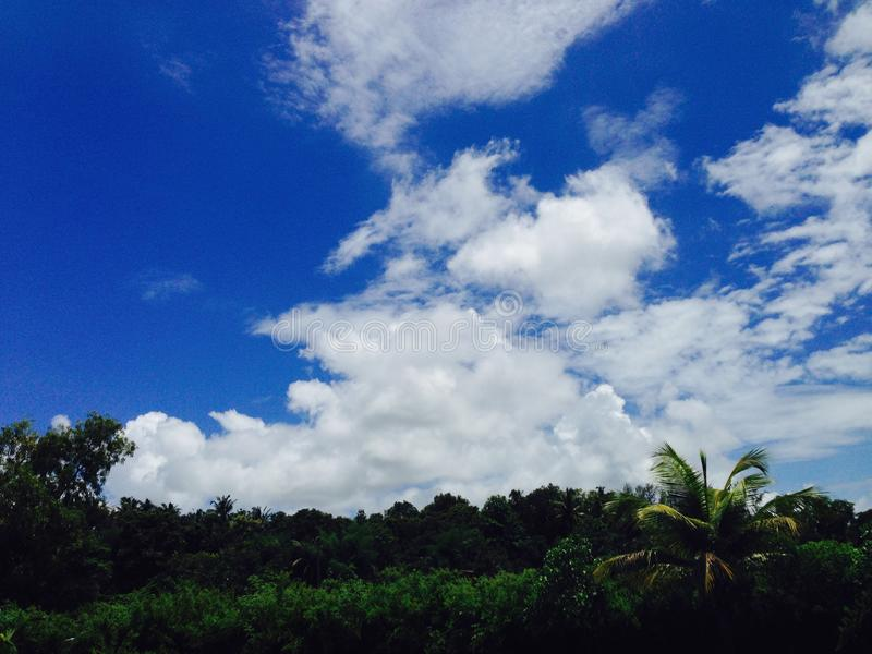 Nachmittagssonnenbild nach Regen am mhasla stockbild