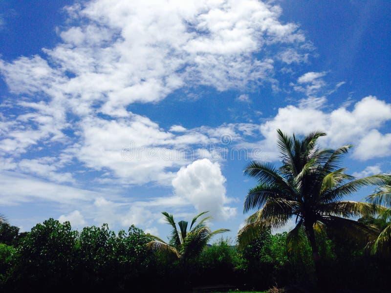 Nachmittagssonnenbild nach Regen am mhasla lizenzfreies stockbild