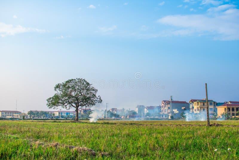 Nachmittagsszene in den Vororten von ha Noi lizenzfreie stockfotos